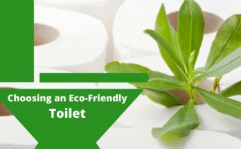 Choosing an Eco-Friendly Toilet
