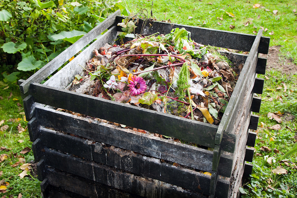 wooden compost bin in yard
