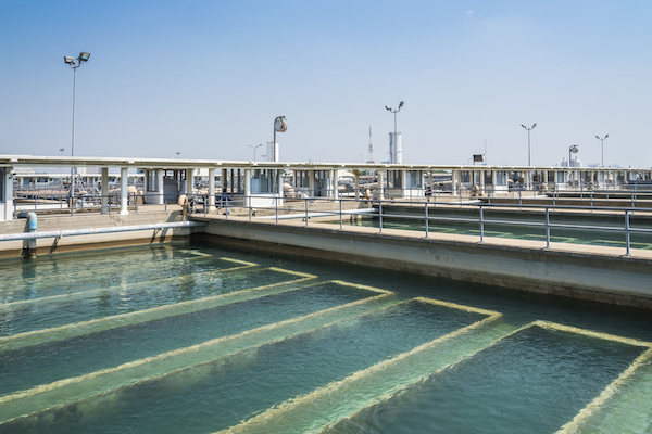 water treatment facility in Arlington texas. Algae in Arlington.