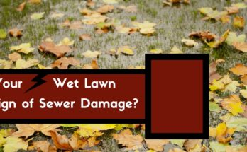 is your wet lawn causing sewer damage?