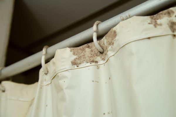 A moldy shower curtain.