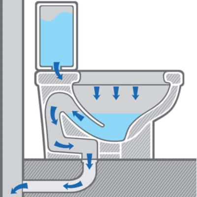 Diagram of how water flows through a toilet when flushed.