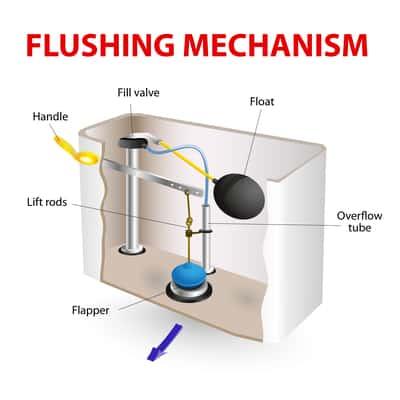 Diagram of inside a toilet tank.
