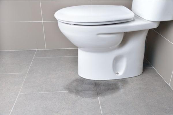 Water pools on bathroom floor from overflowing toilet.