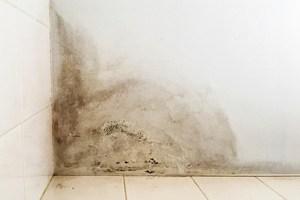 Basement wall water damage.