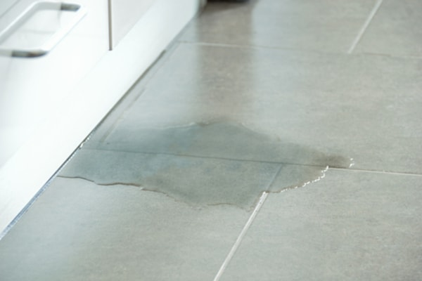 Learn to look for other kinds of leaks, such as this leak beneath a cupboard.