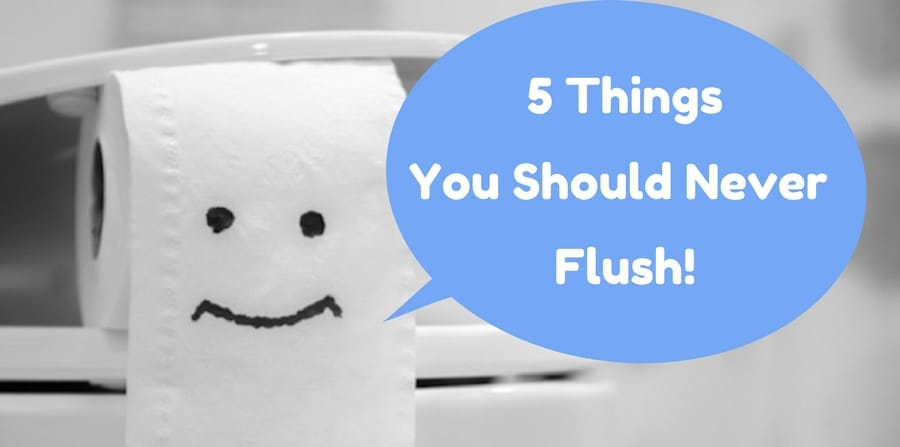 5 Things That Should Never Be Flushed