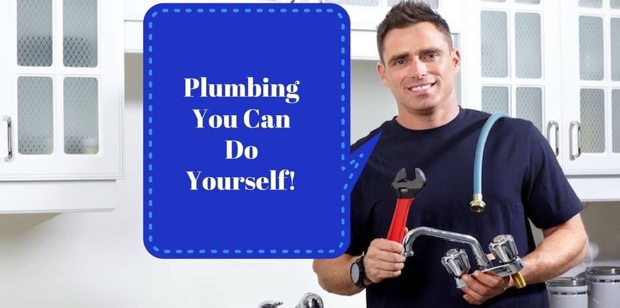 "Smiling plumber with tools. ""Plumbing you can do yourself!"""