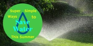 Super Simple Ways to Save Water This Summer