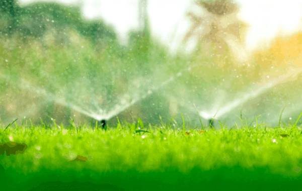 Home lawn irrigation system