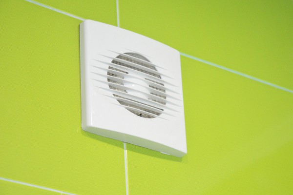 Bathroom ventilation system