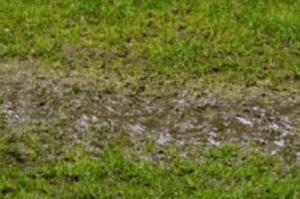 yard water line leak onto grass